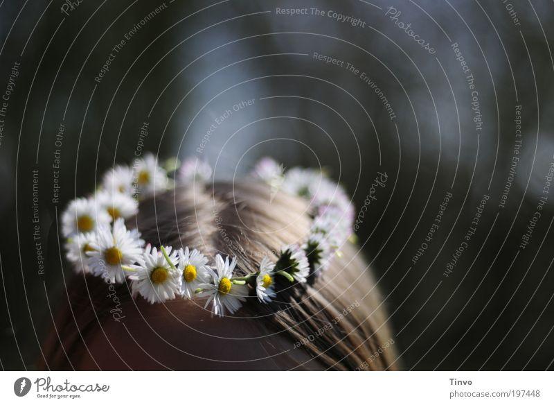 Blumenkind feminin Kopf Haare & Frisuren Pflanze Frühling Sommer Schönes Wetter Blüte Fröhlichkeit frisch schön niedlich positiv Freude Glück Lebensfreude
