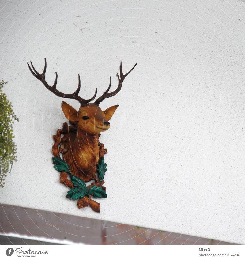 Kitsch Tier Wand Kopf Mauer Wohnung Fassade Lifestyle Dekoration & Verzierung Häusliches Leben Kunststoff trendy Hirsche Gebäude Nippes