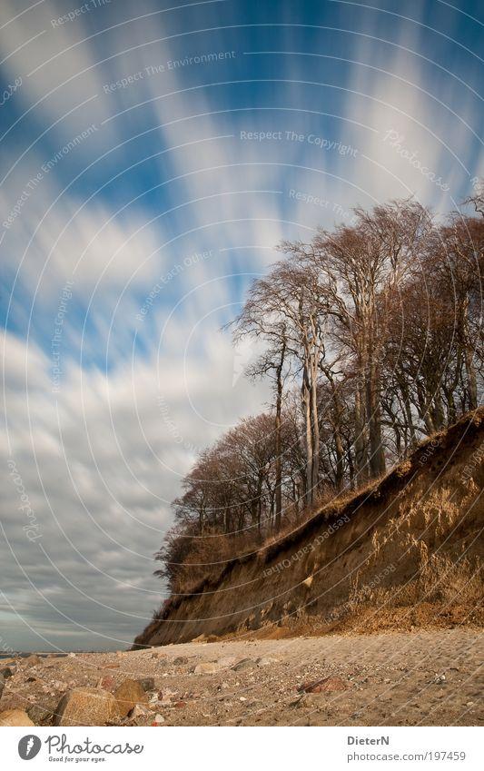 In Bewegung Himmel Natur blau weiß Meer Strand Erholung Umwelt Landschaft Sand Küste Erde Wetter Wind gold Klima