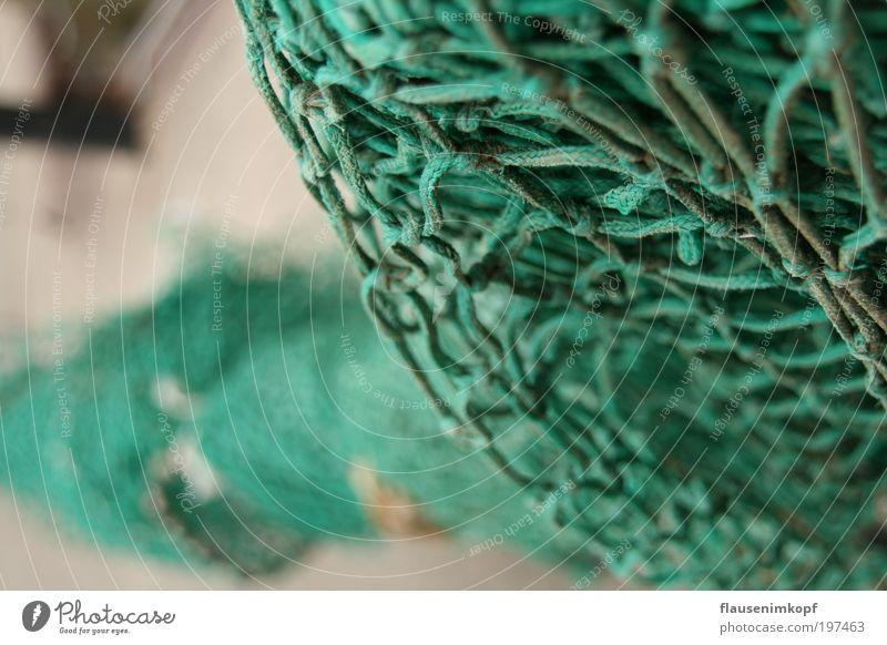 netz.Werk Meer grün Netzwerk Netz Knoten Feierabend