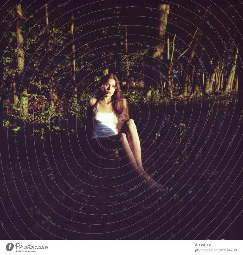 Eine Fee Jugendliche Junge Frau schön Baum Landschaft Erotik Wald 18-30 Jahre Gesicht Erwachsene Lifestyle Beine Ausflug ästhetisch sitzen Sträucher