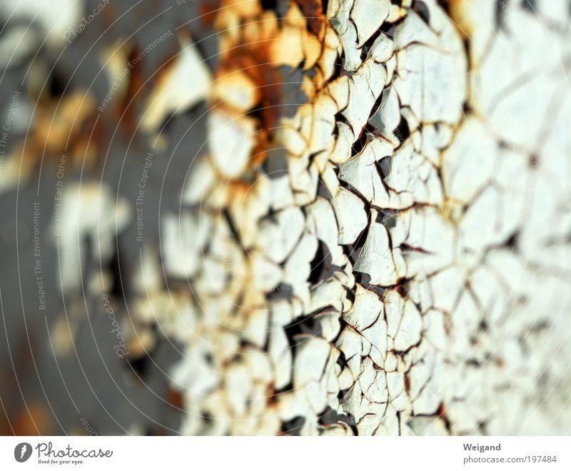 Pangäa alt weiß Architektur Farbstoff Gebäude Metall Bauwerk Rost Makroaufnahme Oberfläche nachhaltig Lack Mosaik