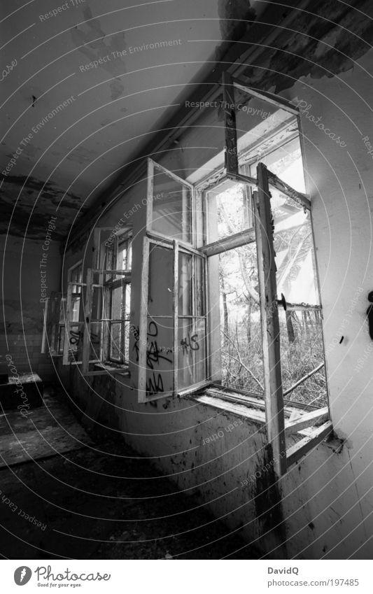 offen alt weiß schwarz Fenster Gebäude kaputt Verfall Bauwerk Ruine Schwarzweißfoto Licht