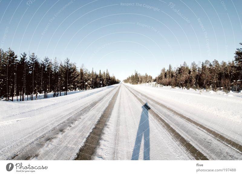 luosto IX Natur Himmel Baum Pflanze Winter Ferien & Urlaub & Reisen Ferne Straße Wald kalt Schnee Freiheit Wege & Pfade Landschaft Umwelt Verkehr