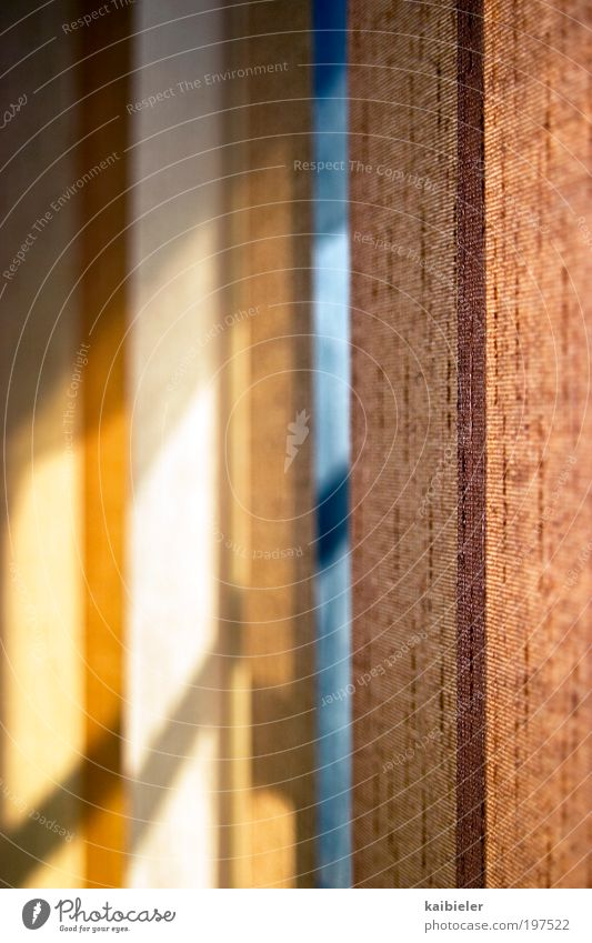 Der Tag bleibt draußen II Häusliches Leben Wohnung Innenarchitektur Dekoration & Verzierung Vorhang Rollo Fenster ästhetisch dunkel blau gelb rot Geborgenheit