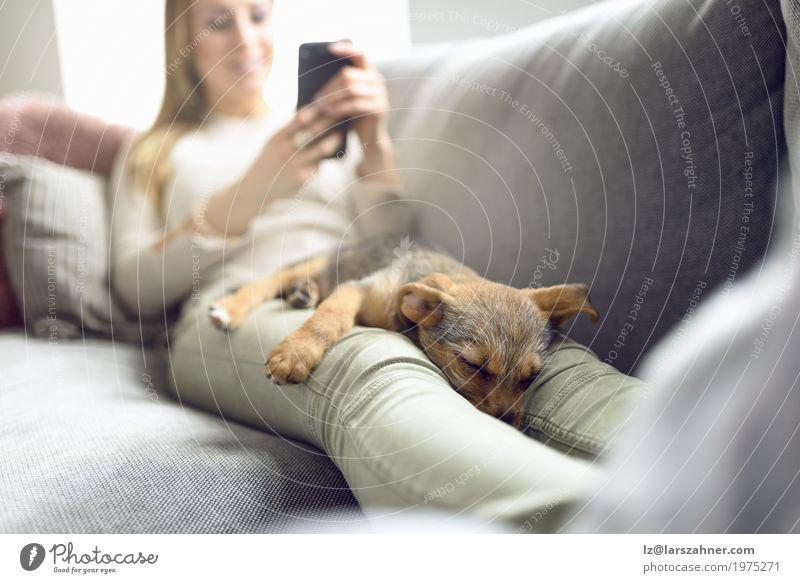 Frau Hund Erholung Tier ruhig Erwachsene Textfreiraum Lächeln schlafen lesen Liege Sofa Haustier Wohnzimmer Geborgenheit PDA