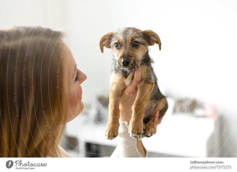 Junge Frau, die ihren Welpen hält Hund Jugendliche weiß Tier klein Textfreiraum niedlich Haustier Geborgenheit Halt Kuscheln loyal