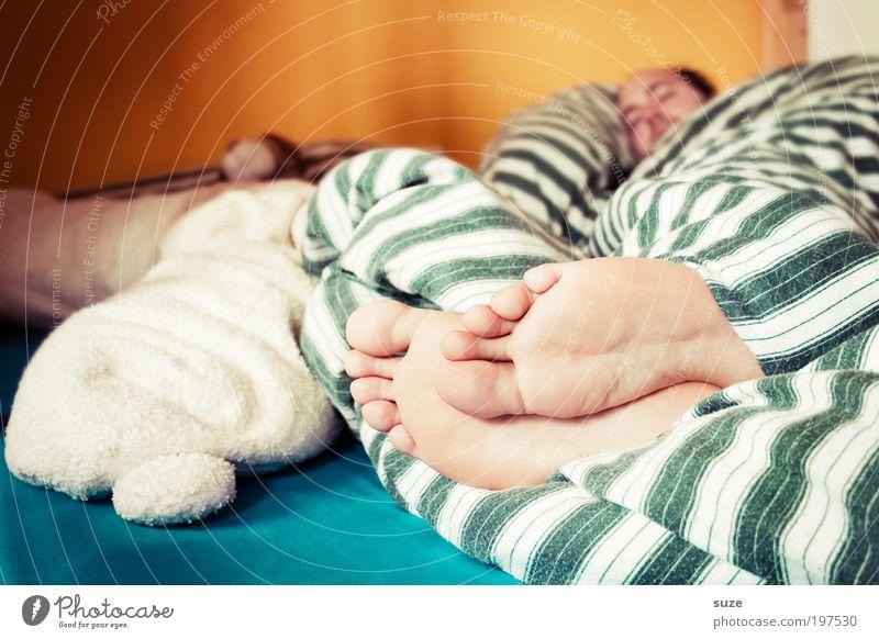 Wer hat in meinem Bettchen geschlafen? Haut Erholung Häusliches Leben Wohnung Schlafzimmer Arbeitslosigkeit Feierabend Mensch Mann Erwachsene Fuß 1 Teddybär