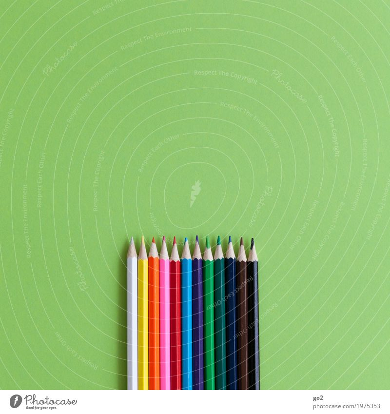 Buntstifte Farbe grün Kunst Schule Design Freizeit & Hobby Zufriedenheit Büro Ordnung ästhetisch Kreativität Fröhlichkeit einzigartig Idee Papier zeichnen