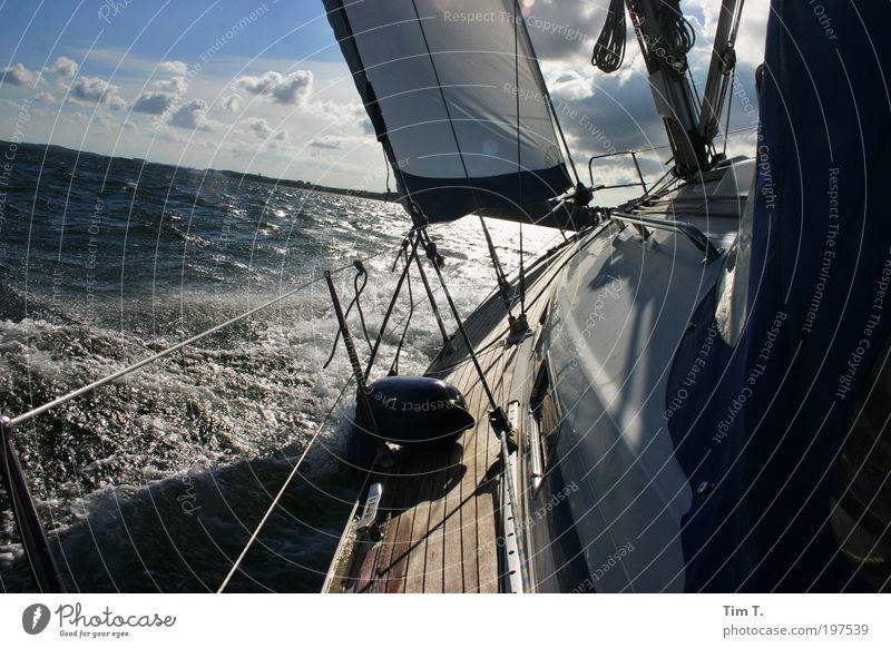 Sailing Natur Wasser Meer Sommer Ferien & Urlaub & Reisen Ferne Freiheit Wind Wetter Umwelt Abenteuer Freizeit & Hobby Segeln Ostsee Schönes Wetter