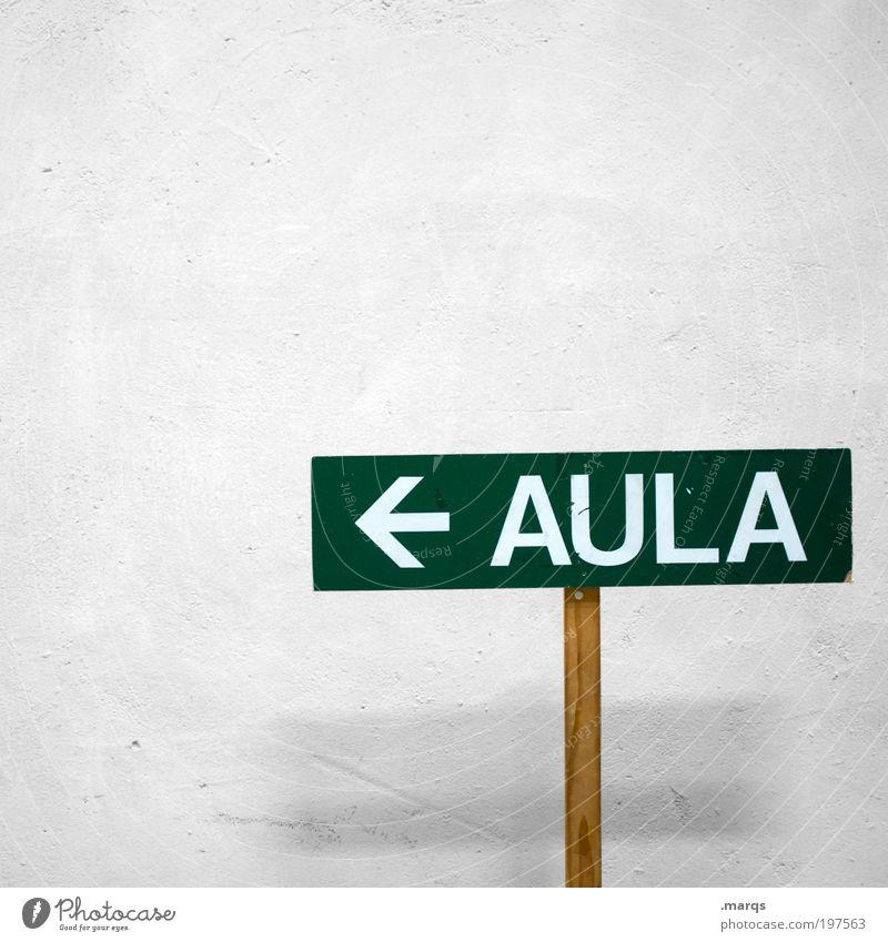 AULA Bildung Erwachsenenbildung Schule Berufsausbildung Studium Aula Karriere Schriftzeichen Schilder & Markierungen Hinweisschild Warnschild Pfeil einfach grün