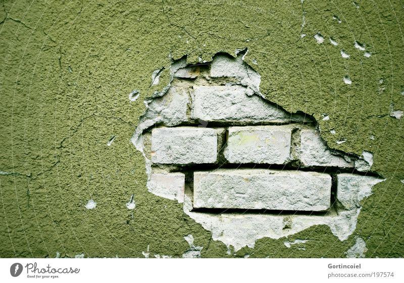 Reparaturbedarf [LUsertreffen 04|10] Bauwerk Mauer Wand Fassade Stein Backstein alt grün verfallen kaputt Loch Mauerstein Fuge Riss Putz Putzfassade verwittert