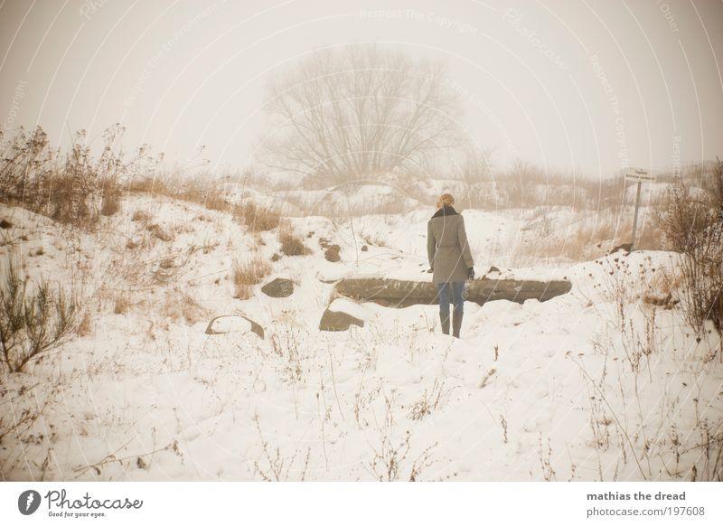 SHE WALKS AWAY Mensch Umwelt Natur Landschaft Himmel Horizont Winter schlechtes Wetter Nebel Eis Frost Schnee Pflanze Baum Sträucher Wiese Feld Bewegung Denken
