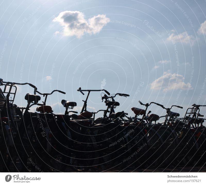 Stadt Ferien & Urlaub & Reisen Fahrrad ästhetisch einfach Sightseeing Niederlande Amsterdam