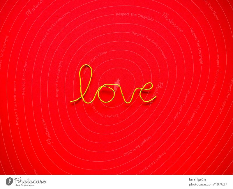 Nur ein Wort Schriftzeichen gelb grün rot Gefühle Liebe Partnerschaft Draht feuerrot Farbfoto mehrfarbig Studioaufnahme Nahaufnahme Menschenleer