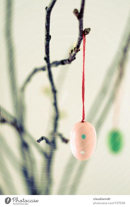 Eierei Wohnung Dekoration & Verzierung Ostern Frühling Blumenstrauß Holz Zeichen Osterei hängen Religion & Glaube Zweig aufhängen Nähgarn rot Vase gepunktet