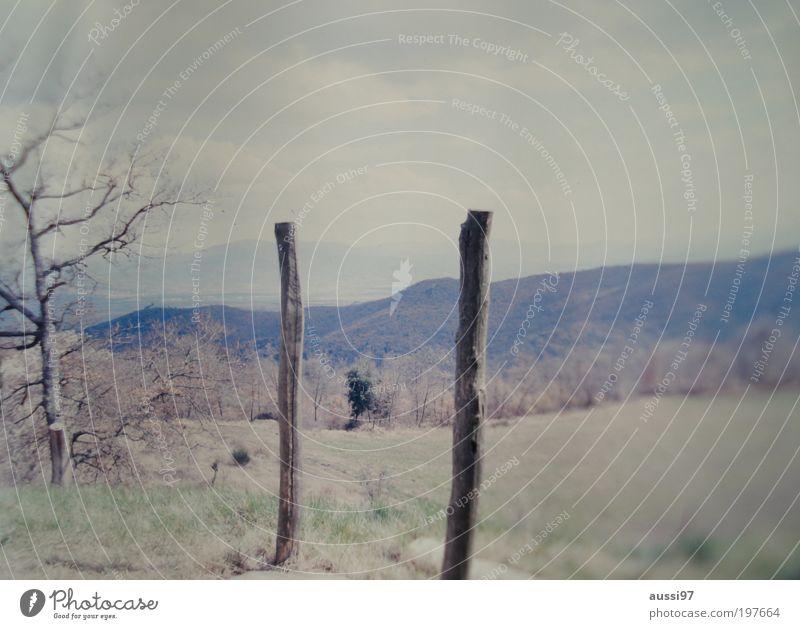 Where do you go to, my lovely? Toskana Pfosten Holzpfahl Italien Unschärfe Positive Liquid Landschaft
