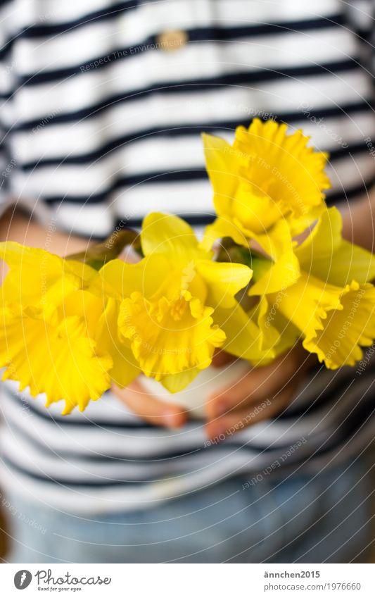 Narzissen Kind Natur Pflanze weiß Hand Blume gelb Frühling hell festhalten gestreift Vase