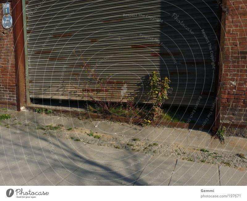 Green Power Industrie Umwelt Natur Schönes Wetter Pflanze Gras Sträucher Stadtrand Menschenleer Industrieanlage Gebäude Mauer Wand Rolltor Stein Beton Metall