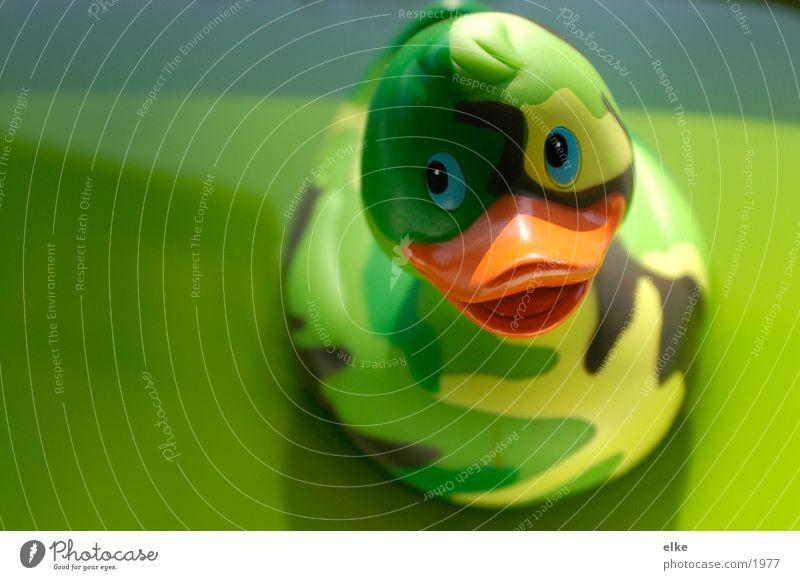 Tarnente grün Gummi Spielzeug Ente Badeente Objektfotografie Kitsch Sammlerstück Tarnfarbe