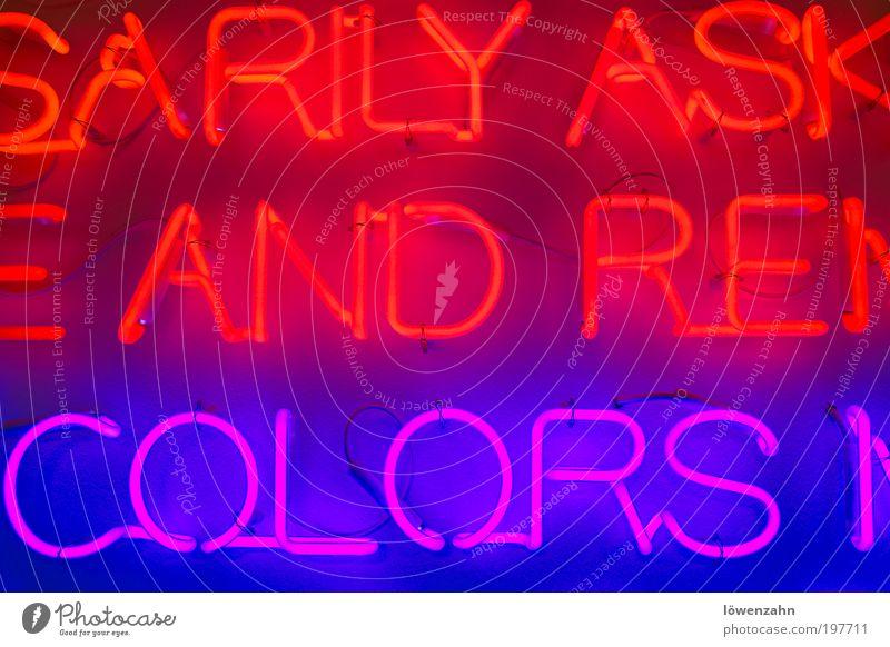 and.colors Lampe hell trendy einzigartig kalt schön Wärme violett rot Kreativität Neonlicht Leuchtstoffröhre Installationen Farbfoto Innenaufnahme
