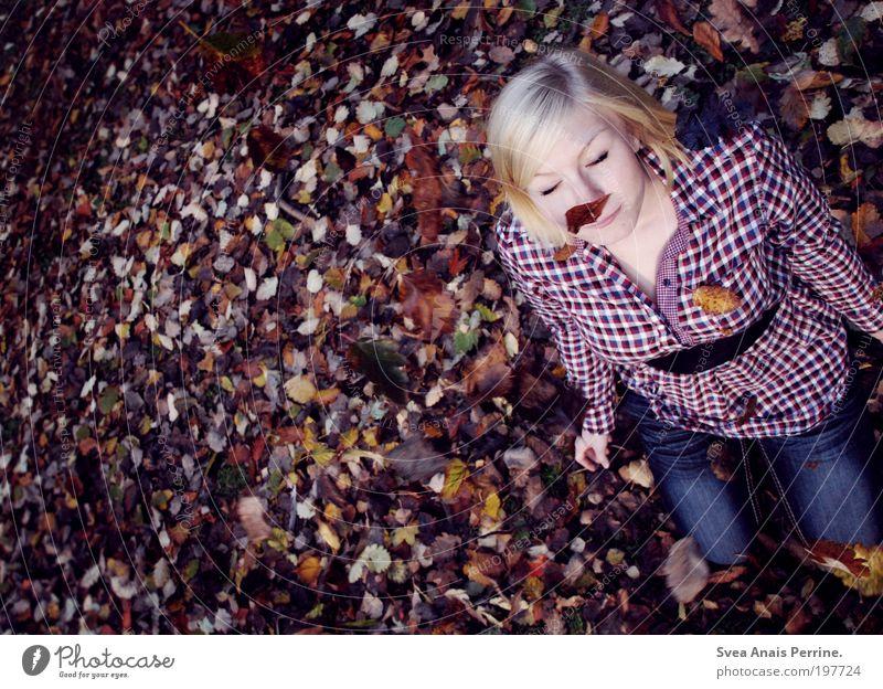 regen. Mensch Jugendliche schön rot Pflanze Freude Blatt Erwachsene Herbst feminin Spielen Gefühle Freiheit Stimmung braun blond