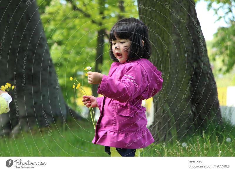 Kindheit Mensch feminin Kleinkind 1 1-3 Jahre 3-8 Jahre Umwelt Natur Landschaft Pflanze Frühling Sommer Schönes Wetter Baum Blume Gras Blatt Blüte Garten Park