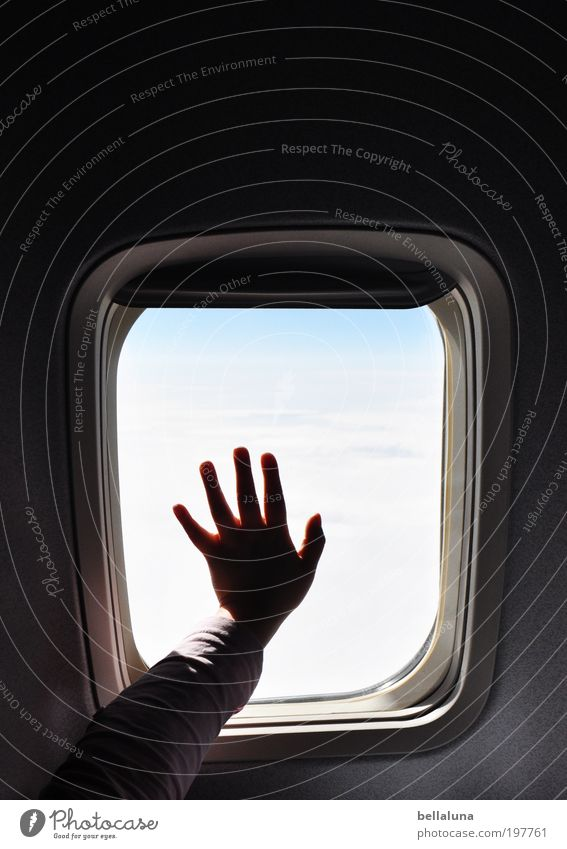 Adiòs Mensch Himmel Hand Ferien & Urlaub & Reisen Wolken Leben Fenster Kindheit Arme fliegen Flugzeug Finger Flugzeugfenster festhalten Sehnsucht Fernweh