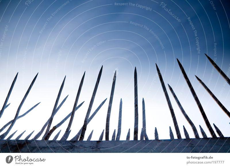 Ufo-Abschreckvorrichtung dunkel kalt Wand Mauer Linie Angst Wachstum bedrohlich Spitze Schutz Pfeil Wut Zaun Stahl Krieg Wachsamkeit