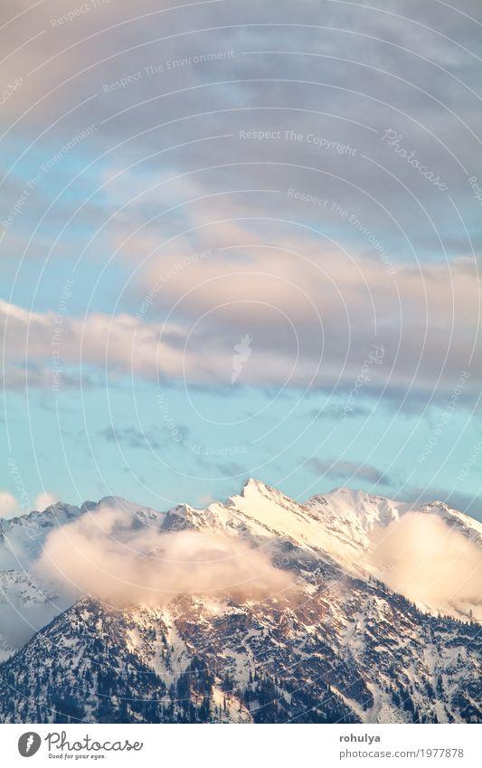 Bergspitzen über Himmel im Abendsonnenlicht Ferien & Urlaub & Reisen Winter Schnee Berge u. Gebirge Natur Landschaft Wolken Wald Alpen Gipfel blau Gelassenheit