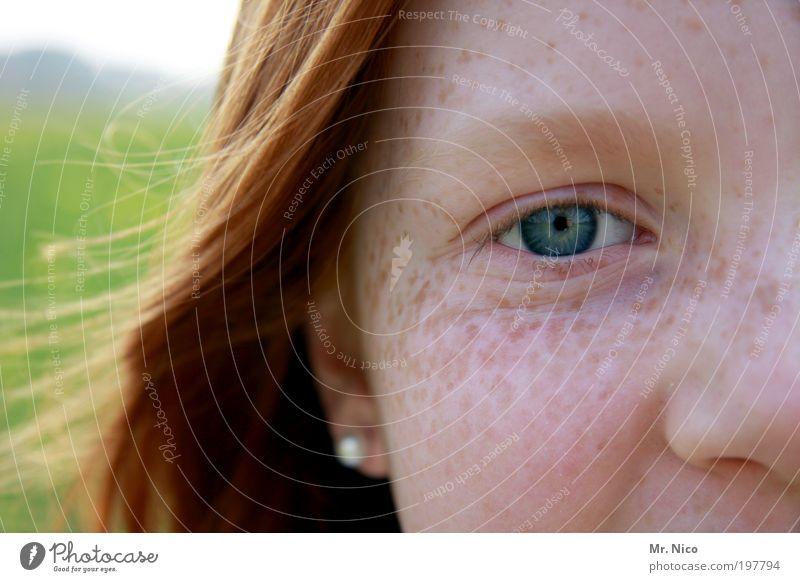 little miss sunshine feminin Mädchen Kindheit Jugendliche Haut Kopf Haare & Frisuren Gesicht Auge Ohr Nase Ohrringe rothaarig langhaarig frech Freundlichkeit