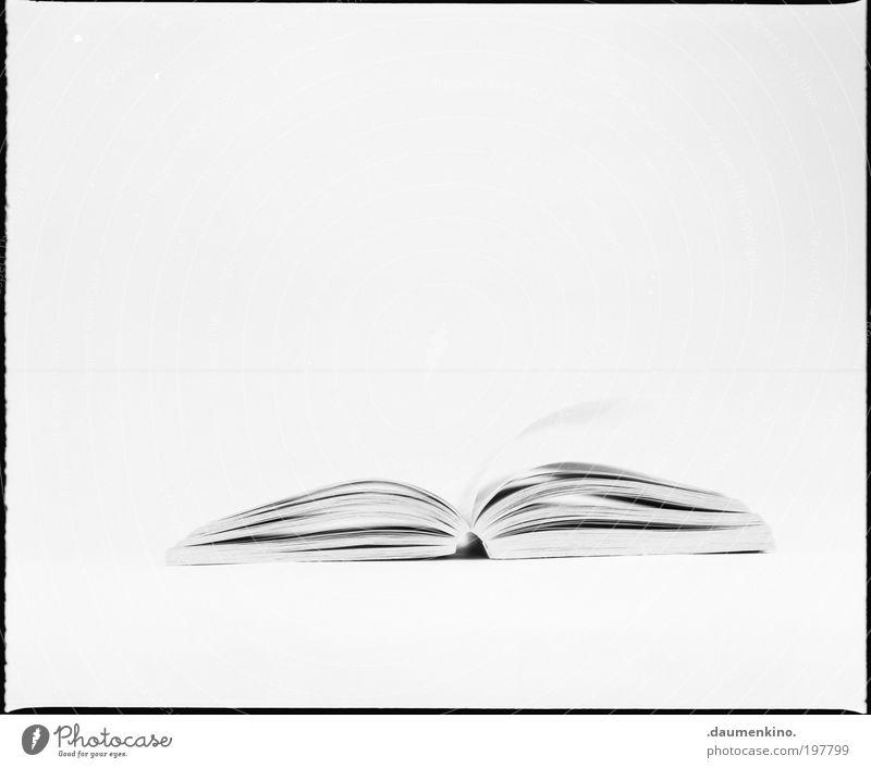 - - Buch Medien ästhetisch offen Papier Schreibwaren Zettel High Key Notizbuch Lesestoff Licht blättern
