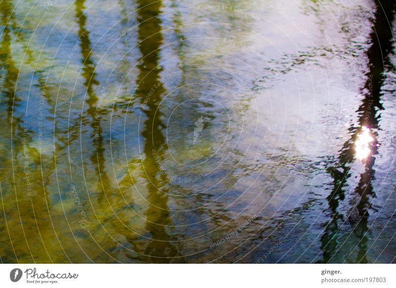 Wasserwelt II - Sonnenreflexion Natur blau grün weiß Baum gelb Wärme Bewegung Frühling Beleuchtung träumen Stimmung braun Wellen Warmherzigkeit Schönes Wetter
