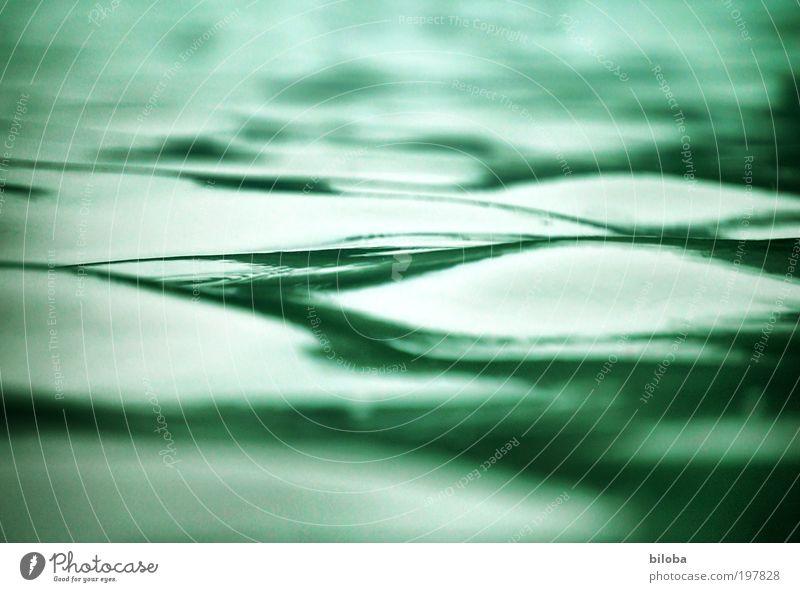 Wellen Umwelt Natur Urelemente Wasser Sommer grün weiß Strukturen & Formen Hintergrundbild Erholung ruhig beruhigend sanft See biloba Farbfoto Außenaufnahme