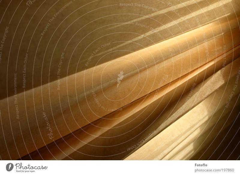 Lightlines Sinnesorgane ruhig Wohnung Sonne Menschenleer beobachten berühren Denken träumen ästhetisch frei Sauberkeit Wärme gelb gold rot Zufriedenheit