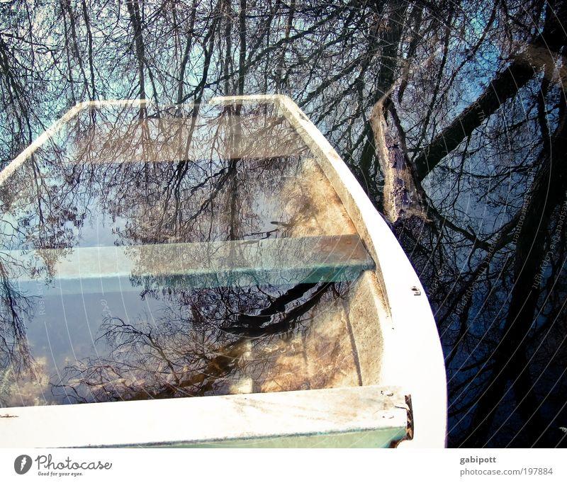abgetaucht Angeln Natur Pflanze Wasser Baum Wald Moor Sumpf Teich See Wasserfahrzeug Ruderboot U-Boot Holz alt Einsamkeit Surrealismus Traurigkeit Umwelt