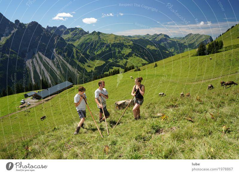Almhirten Umwelt Natur Landschaft Sommer Schönes Wetter Felsen Alpen Berge u. Gebirge Gipfel Kommunizieren Bregenzerwald Vorarlberg Landwirtschaft Almwirtschaft