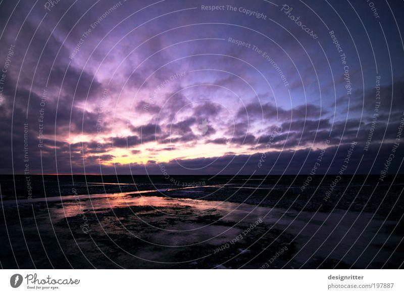 """""""Nähme ich Flügel der Morgenröte … Himmel Wasser Landschaft Wolken ruhig Winter Leben Küste Wetter Eis Wind Klima Ewigkeit Neugier Hoffnung Frost"""