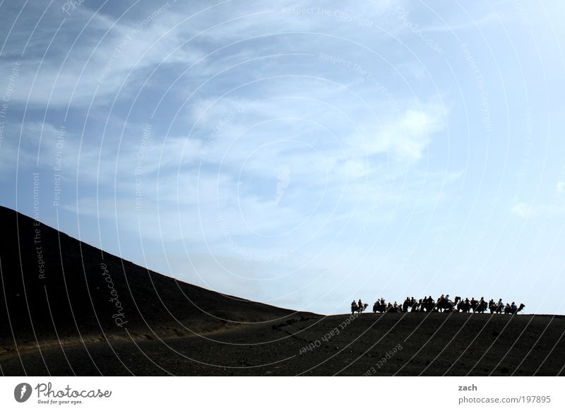 Kamelkarawane Mensch Himmel blau Tier Berge u. Gebirge Wege & Pfade Sand Abenteuer Insel Tourismus Tiergruppe Safari Reiten Vulkan unterwegs