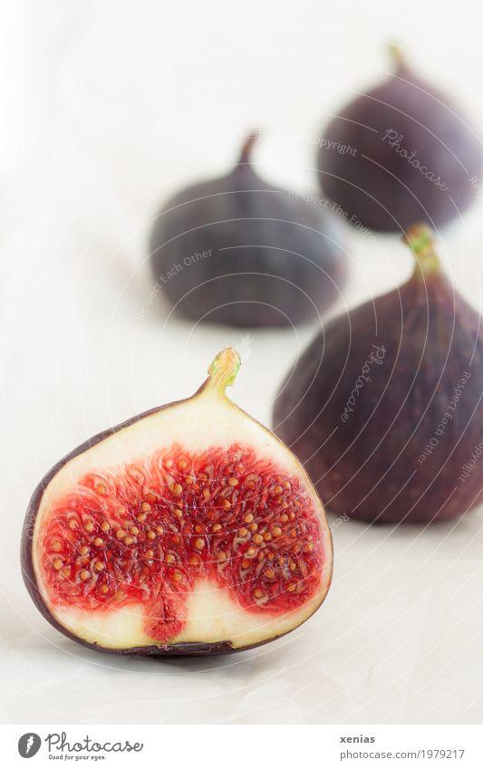 Vier Feigen weiß rot Gesundheit Lebensmittel Frucht Ernährung frisch violett Vegetarische Ernährung Vitamin Feige
