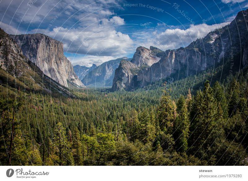 Yosemite National Parc Natur Landschaft Wald Felsen Berge u. Gebirge Sehnsucht Einsamkeit Abenteuer Erholung Ferien & Urlaub & Reisen Farbfoto Außenaufnahme