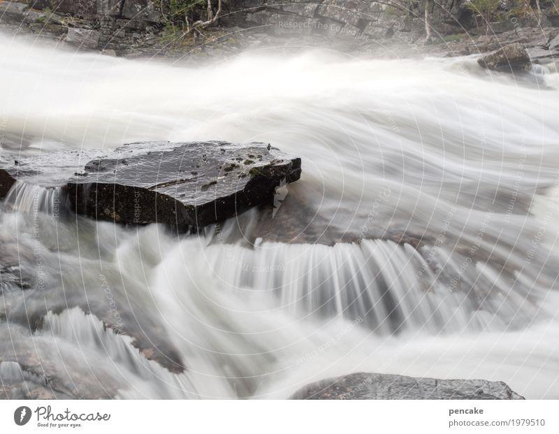 wasser | musik Natur Landschaft Urelemente Wasser Fluss Stein ästhetisch Erfolg frisch Gesundheit nass natürlich Wasserfall Norwegen Steinplatten