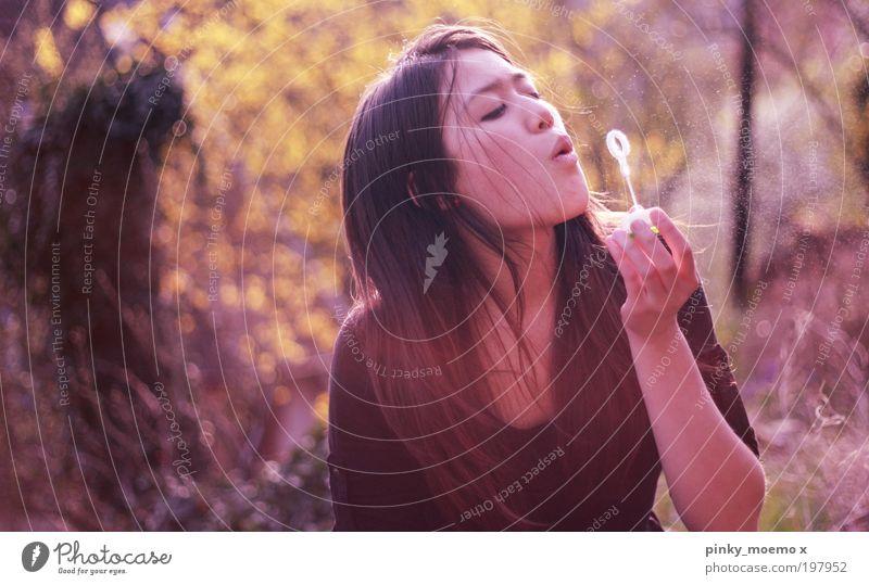 Zerplatzte Träume Mensch Jugendliche Pflanze Sonne Sommer ruhig gelb feminin Leben Regen Zufriedenheit Mund Tropfen Ziel Duft Wohlgefühl