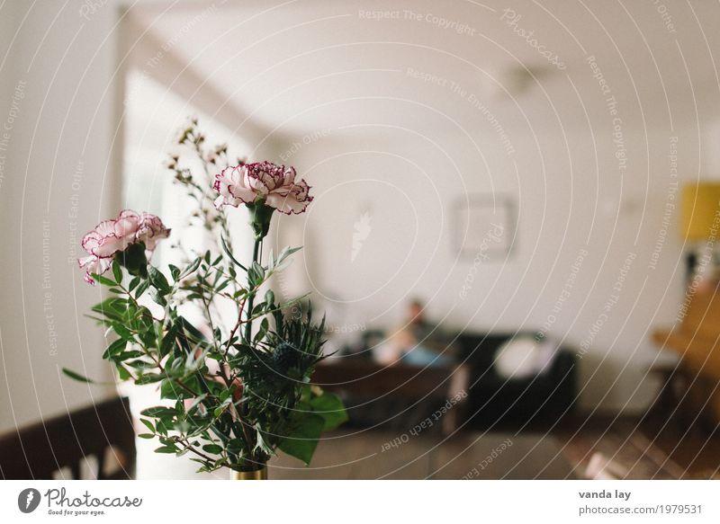 Zuhaus Mensch Kind Frau Jugendliche Junge Frau Junger Mann Haus Erwachsene Blüte Innenarchitektur feminin Lampe Wohnung Häusliches Leben maskulin Raum