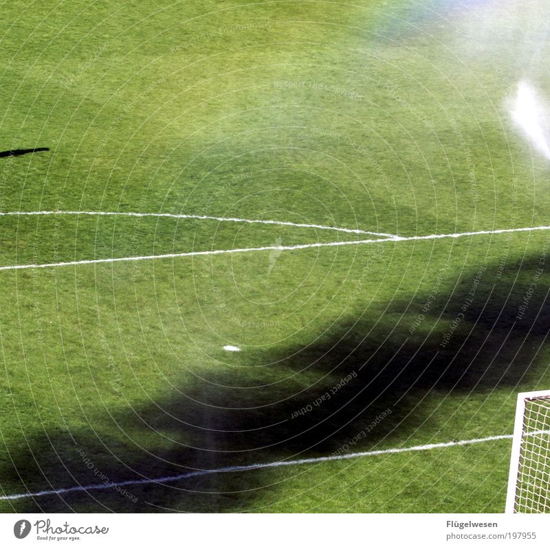 2. Liga nie mehr... Sport Spielen Freundschaft Fußball Freizeit & Hobby Erfolg Rasen außergewöhnlich Tor Publikum kämpfen Sportveranstaltung Fan Sportler