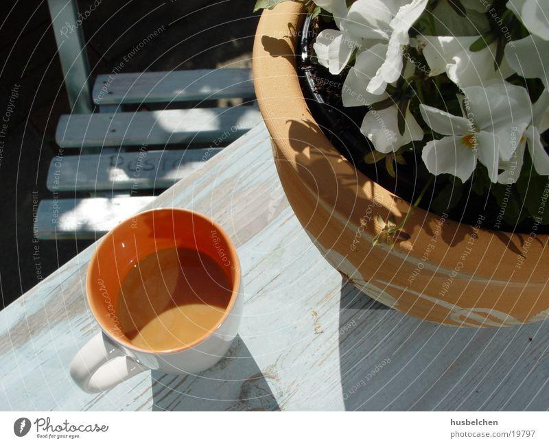 frühstück Terrasse Tisch Blume Frühling Sommer Alkohol Kaffee Stuhl Veilchengewächse