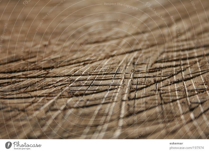 lines alt Holz Linie braun ästhetisch nah authentisch natürlich trocken Furche Strukturen & Formen parallel eckig Textfreiraum links Muster