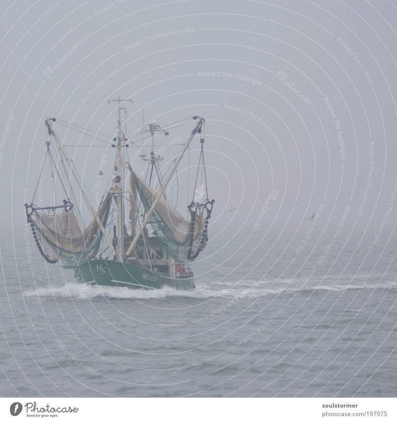 das ist ein Boot! Wasser schlechtes Wetter Nebel Wellen Nordsee Schifffahrt Bootsfahrt Fischerboot Vogel Möwe Arbeit & Erwerbstätigkeit fahren Stimmung