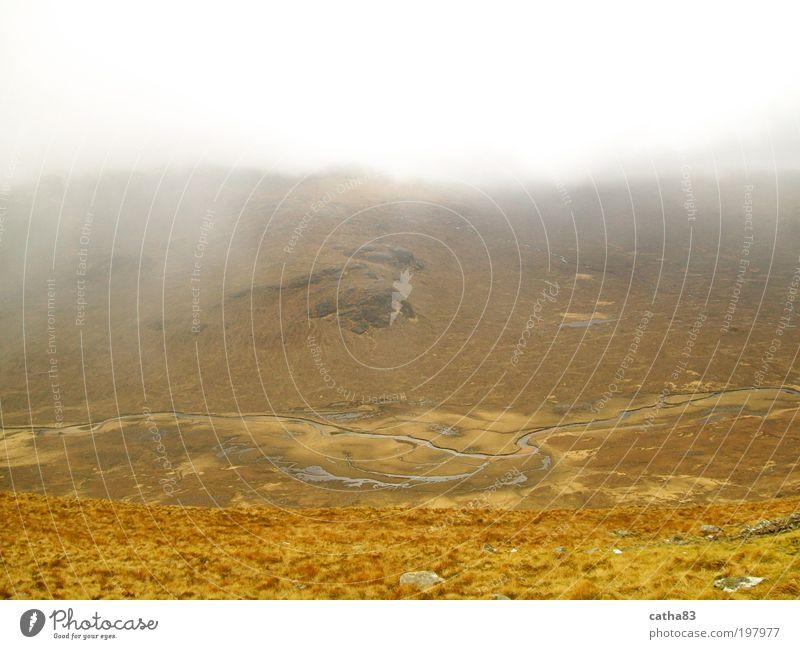 Hochmoor, Insel Sky Freizeit & Hobby Wandern Ferien & Urlaub & Reisen Ausflug Ferne Freiheit Landschaft Wasser Wolken Herbst schlechtes Wetter Nebel Moos Hügel