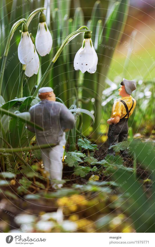 Miniwelten - Sind das Schneeglöckchen? Gartenarbeit sprechen Mensch maskulin Mann Erwachsene 2 Umwelt Frühling Schönes Wetter Pflanze Blume Gras Sträucher Blatt